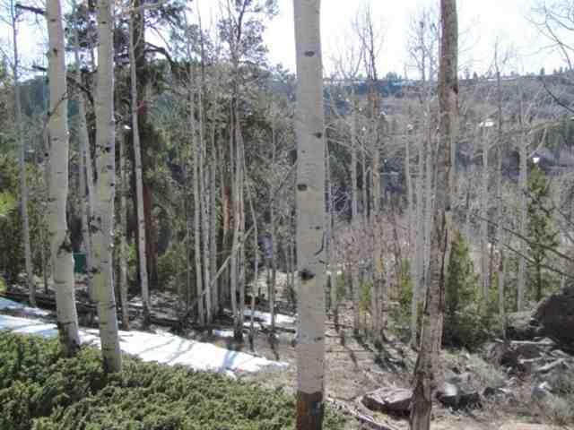 panguitch lake real estate lot for sale at panguitch lake in beaver dam estates search all
