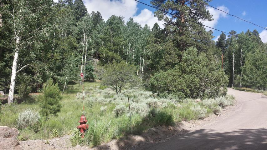 Panguitch Lake lot for sale