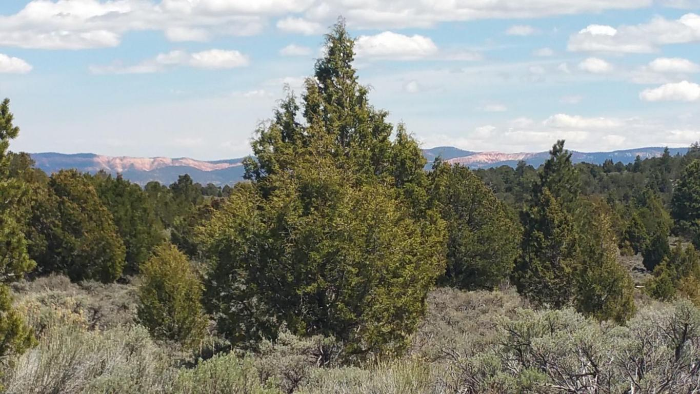Utah Acreage for sale, Southern Utah Real Estate
